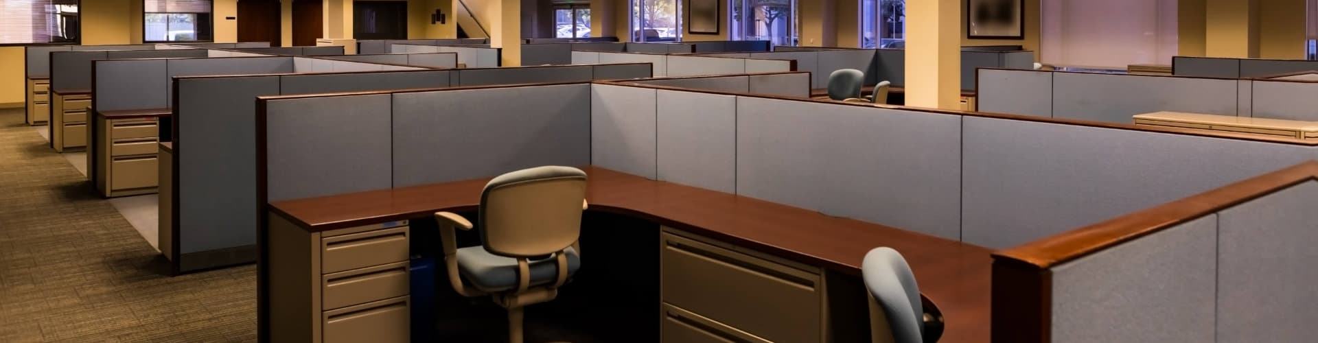 newly remodeled office